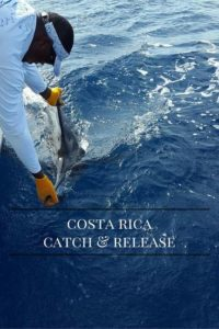 sport fishing in quepos costa rica